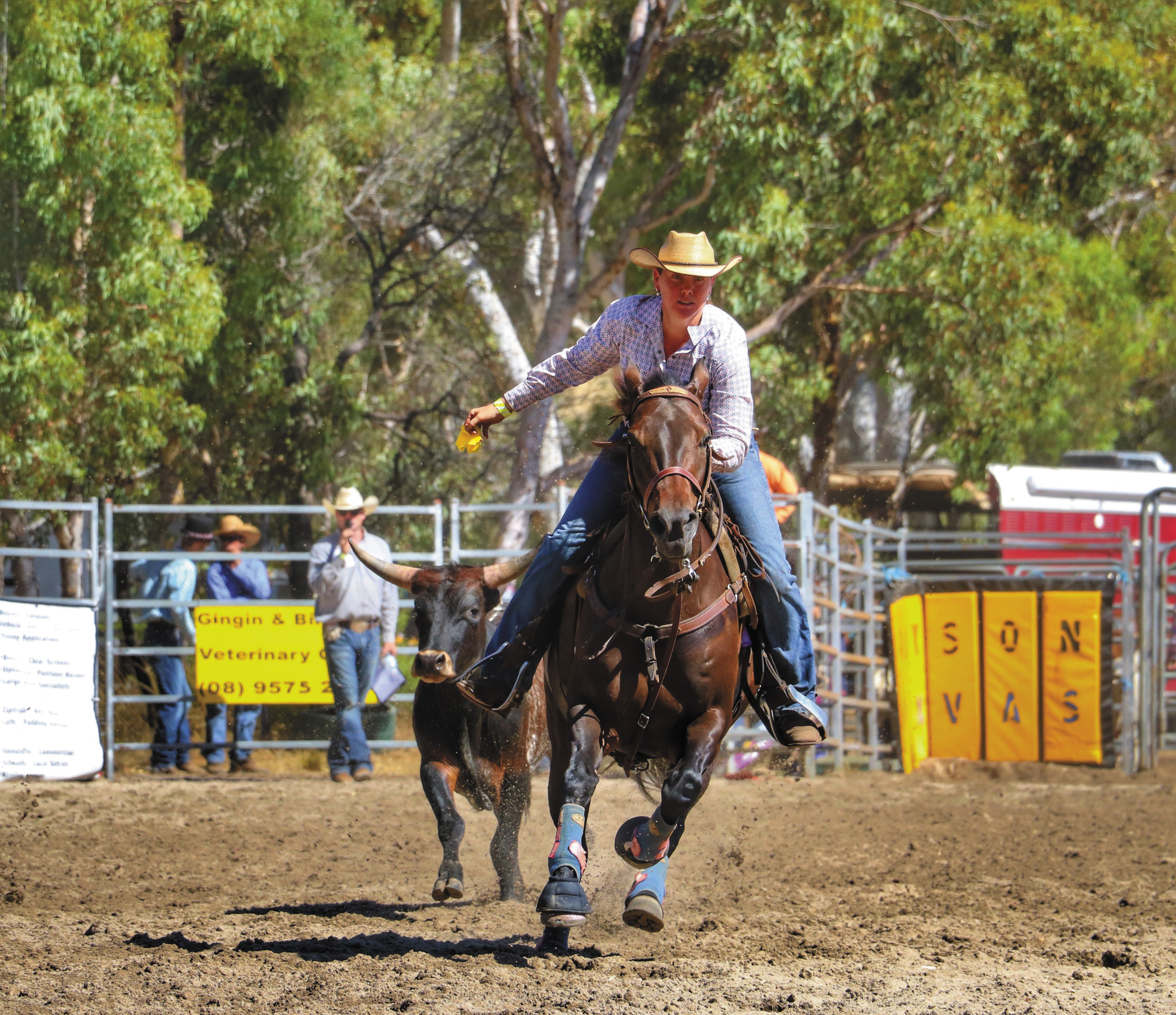 Mogumber New Years Eve Rodeo 2018 Northern Valleys News