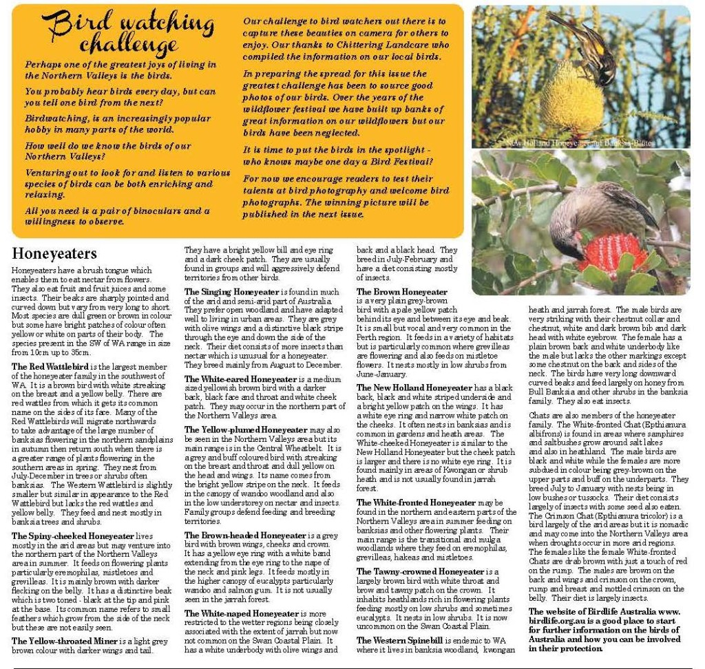 Birdwatching_Page_2
