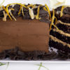 Chocolate and Orange Gateau (Gateau a l 'orange chocolat )