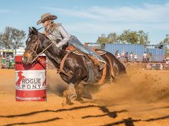 20180602rodeo-81 The Rodeo returns to the Midwest for another Mullewa Muster. An estimated 3000 people from all over WA and competitors from the East Coast have made the journey for total prize pool on offer of $43000. Stacey McCarthy in Barrell Races Won this event.
